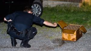 Mann stirbt beim Zünden von Feuerwerk