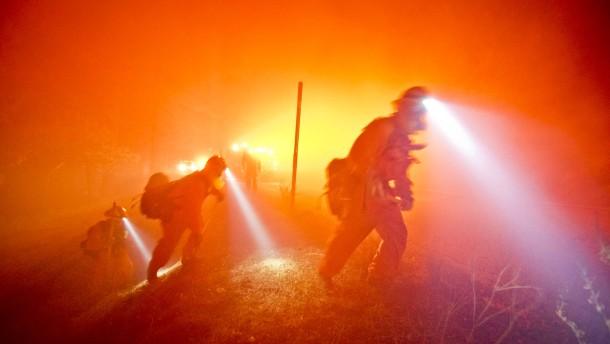 Buschfeuer setzt Dutzende Wagen auf Autobahn in Brand