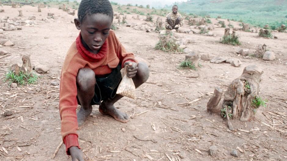 Realität heute: 260 Millionen Afrikaner leiden an  Hunger, weiteren 300 Millionen fehlen lebenswichtige Nahrungsbestandteile.