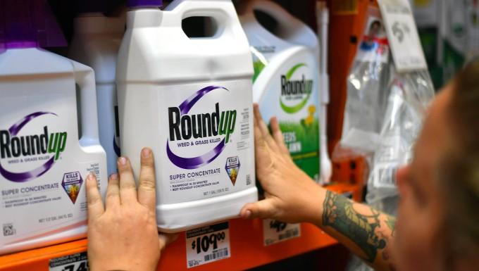 Monsantos Unkrautvernichter Roundup