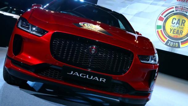 Jaguar auf leisen Sohlen