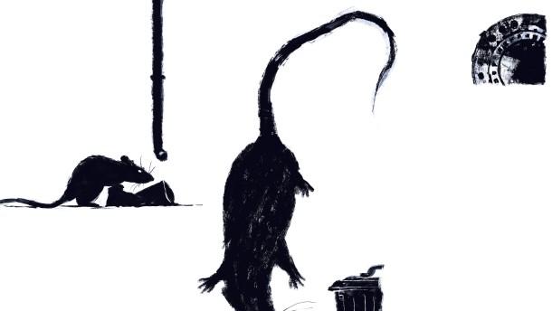 Nachts schlafen die Ratten nicht