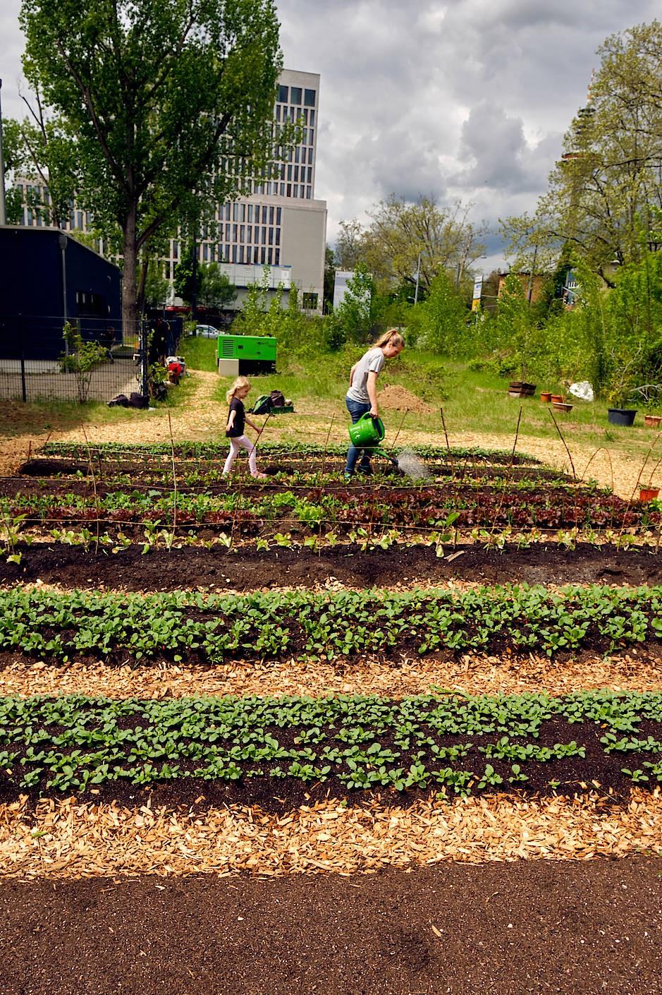 Der Garten ist auch ein Treffpunkt: Gemeinsam kann sogar Unkrautjäten Spaß machen.