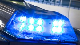 Hochwasserschutzanlage in Grimma mutwillig beschädigt