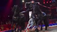 """Einen Goldenen Clown erhielten die Pferdenummern des Zirkus Knie, hier Ivan Knie mit der """"Ungarischen Post""""."""