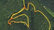 Voll verpeilt: Irrweg durch den Wald in der Tourenaufzeichnung.