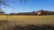 Vechta, Niedersachsen, im Winter: Die Bauern sorgen sich wegen zunehmender Resistenzen um die Wirtschaftlichkeit ihrer Äcker.