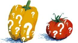 Wie schmeckt eine Paprika?