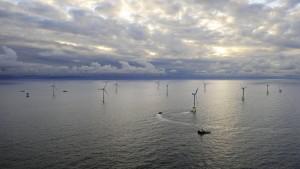 Kompromiss im Streit um Meeres-Windparks in Sicht