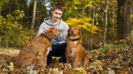 Für die Seele: Ben mit seinen Hunden im Westerwald.
