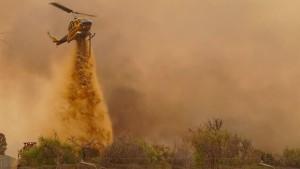 Buschbrand wütet in Australien