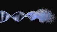 Gekappte Verbindungen: Europa verweigert genetischen Daten die Ausreise nach Amerika.