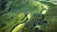 Früher Todesstreifen, heute grünes Band: die ehemals innerdeutsche Grenze zwischen Thüringen und Hessen