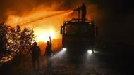 Brände in Türkei und Italien: Heftige Feuer im Mittelmeerraum