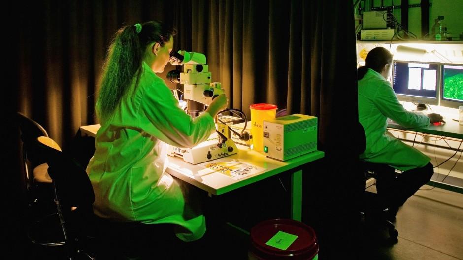 Die Pandemie hat die Bedingungen für sie erschwert: Forscherinnen, hier in Dresden