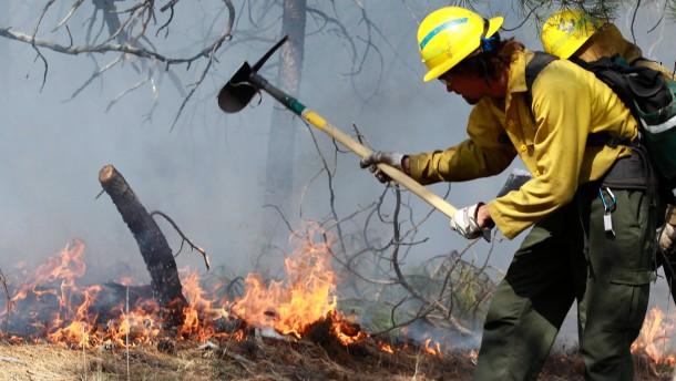 Verheerende Waldbrände in Colorado