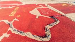 China aus Chili-Schoten