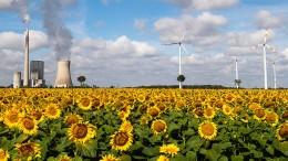 Kohlestrom überholt die Windkraft wieder