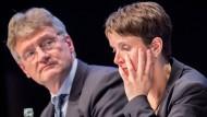 Meuthen: Von Petrys Antrag ohnehin nichts gehalten