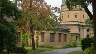 Abgestorben: Auf dem Darmstädter Waldfriedhof müssen aus Sicherheitsgründen 150 Bäume gefällt werden.