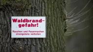 Waldbrandgefahr: Ein Feuer- und Grillverbot soll Brände verhindern (Symbolbild).