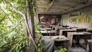 1986 lebten bei Tschernobyl fast 50.000 Menschen.