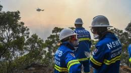 Rund 500 Feuerwehrleute im Einsatz