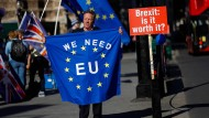 Briten protestieren gegen den Brexit.