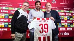 Köln holt den ewigen Pizarro
