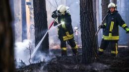 Waldbrandgefahr erreicht höchste Stufe