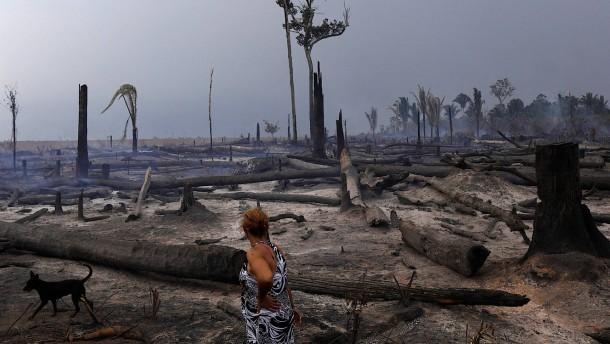 """""""Brasilien leistet sehr gute Arbeit im Kampf gegen den Klimawandel"""""""
