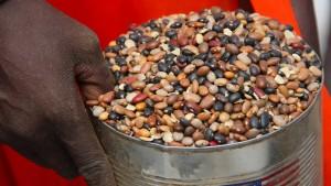 Welthungerhilfe fordert bessere Krisenprävention