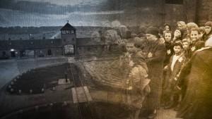 """""""Krieg und Holocaust - Der deutsche Abgrund"""""""