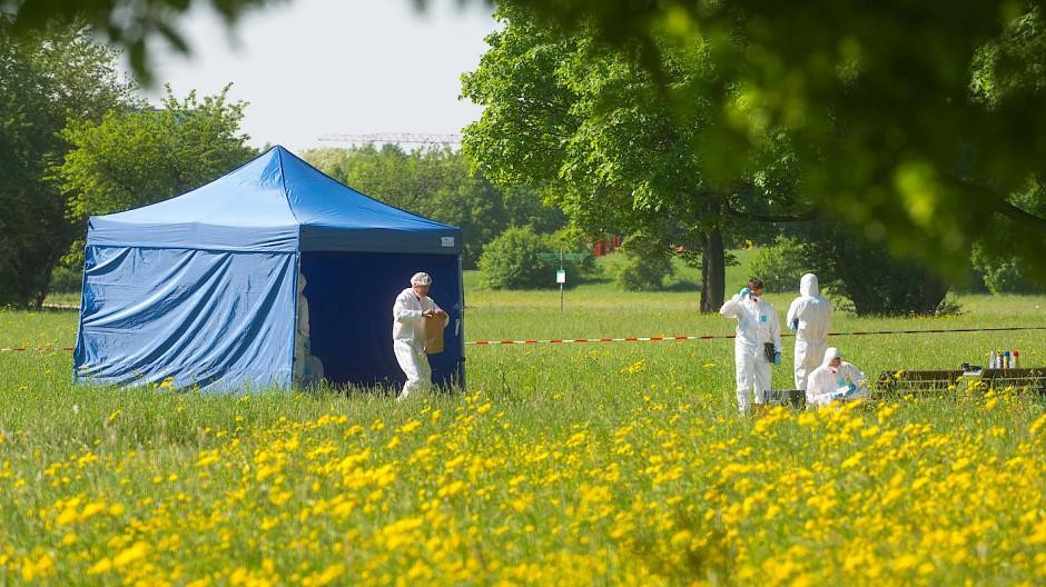 Ermittlungen auf der grünen Wiese: Nach der Gewalttat wird im Park weiter nach Spuren gesucht.