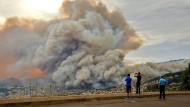 Riesige Rauchsäulen: Die Feuer auf Madeira breiten sich immer weiter aus.