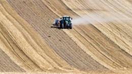 Bauernverband: Etliche Betriebe in Existenznot