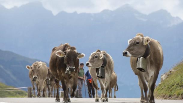 Die Sorgen der Schweizer