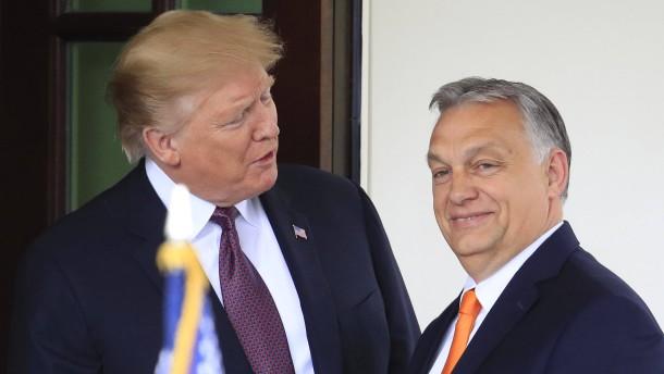 Besuch in Washington: Trump rollt den roten Teppich für Orbán aus