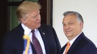 Victor Orbán hat in vielerlei Hinsicht einen großartigen Job gemacht: Donald Trump über seinen Gast aus Ungarn