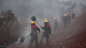 Auch in Bolivien steht der Regenwald in Flammen