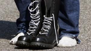 Union will führende V-Leute in NPD abschalten