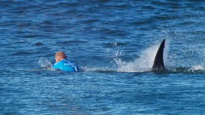 Surf-Weltmeister wehrt Haiattacke ab