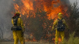 Erste Erfolge im Kampf gegen Waldbrände