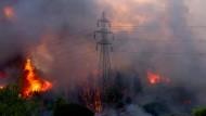 Feuer in der Gegend um Athens nördlichen Vorort Varybobi