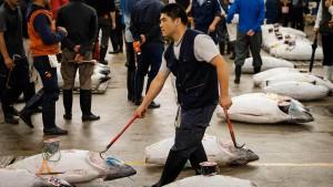 Japan öffnet sich für Gastarbeiter
