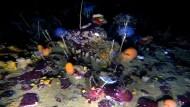 Antarktisches Farbenspiel unter meterdickem Eis