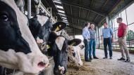 Und die Kuh hört zu: Erich Gussen (links) mit drei weiteren Landwirten aus dem Kreis Düren.