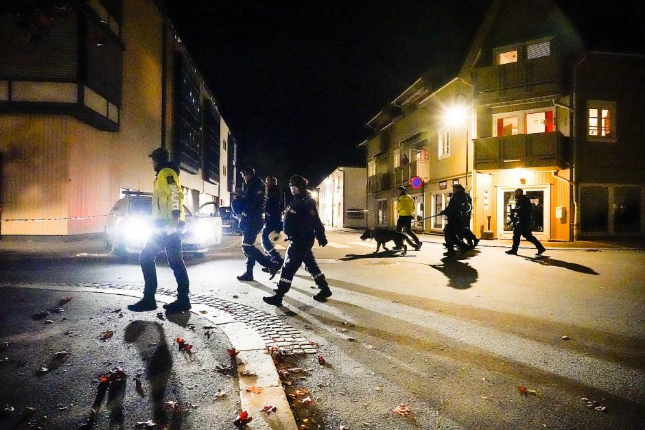 Norwegische Polizei mit Hunden auf den Straßen von Kongsberg