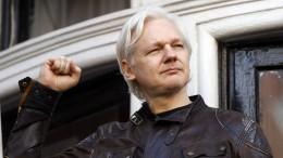 UN-Menschenrechtler befürchtet Gefahr für Assange