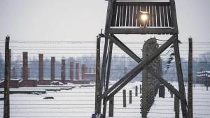 Britische Jugendliche stehlen in Auschwitz